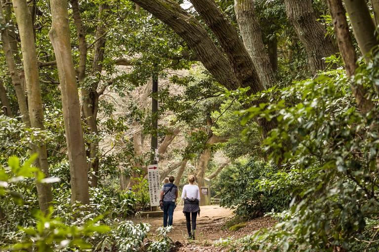 People walking on Daibutsu Hiking Trail near Genjiyama Park