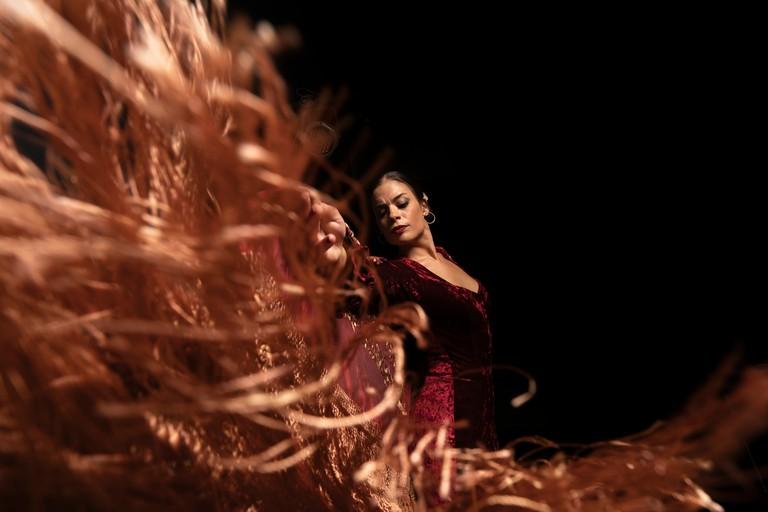 Flamenco On Black