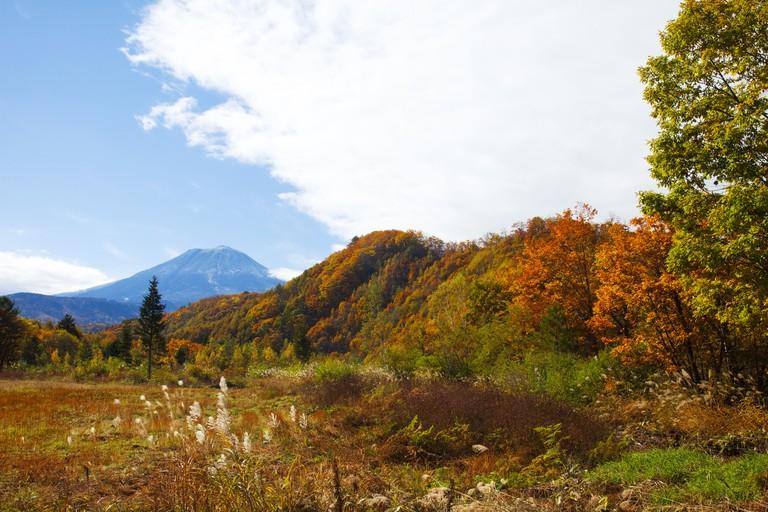 Mt.Mitake, Gifu Prefecture, Honshu, Japan