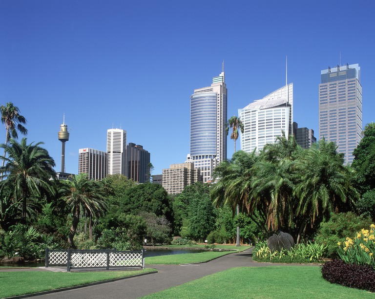 Botanical Gardens & city skyline, Sydney, New South Wales, Australia