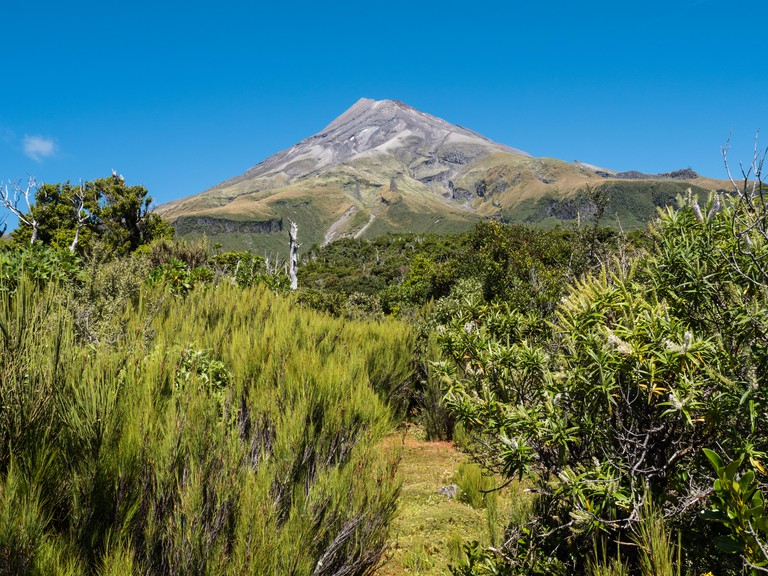 Mount Taranaki, Egmont National Park