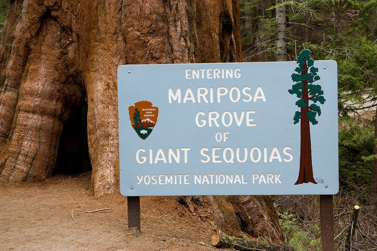Entry of the Mariposa Grove giant sequois park