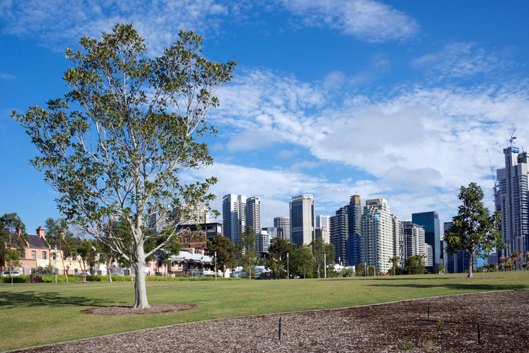 Barangaroo Reserve and city skyline, Sydney.