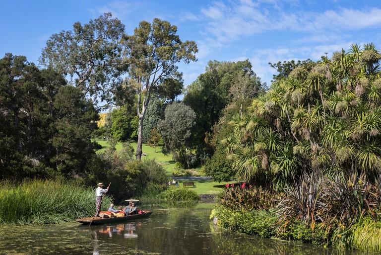 Punting boat tour on the Royal Botanic Gardens Ornamental Lake