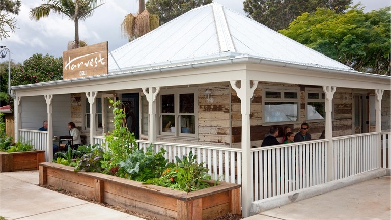 Harvest Deli, Newrybar, NSW, Australia. Harvest Newrybar uses a lot of native Australian ingredients in its dishes
