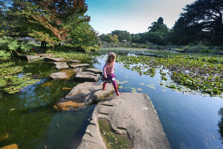 Cambridge University Botanic Garden in early Autumn AND HER GIRL WALKS OVER SKIPPING STONES BY A POND.