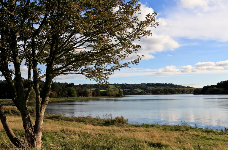8869. Chew Valley Lake, Somerset, England, UK