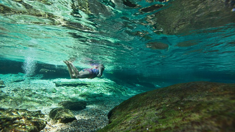 Underwater Photo showing a female swimmer swim through Rock Springs Run in Kelly Park in Central Florida
