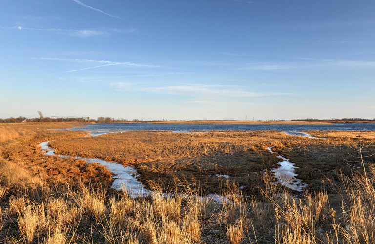 View of Marine Park Salt Marsh, Brooklyn, New York.