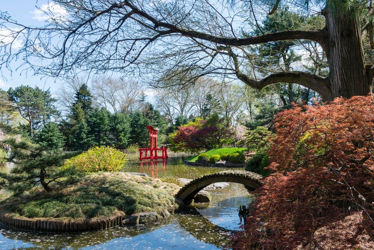 United States, New York, Brooklyn, Brooklyn Botanic Garden, Japanese Garden Basin