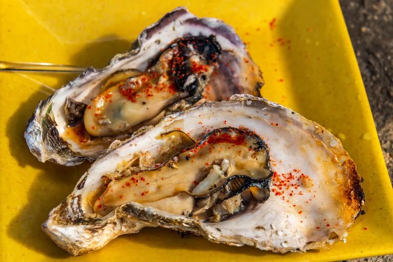 Grilled oysters on plate, Miyajima Island.