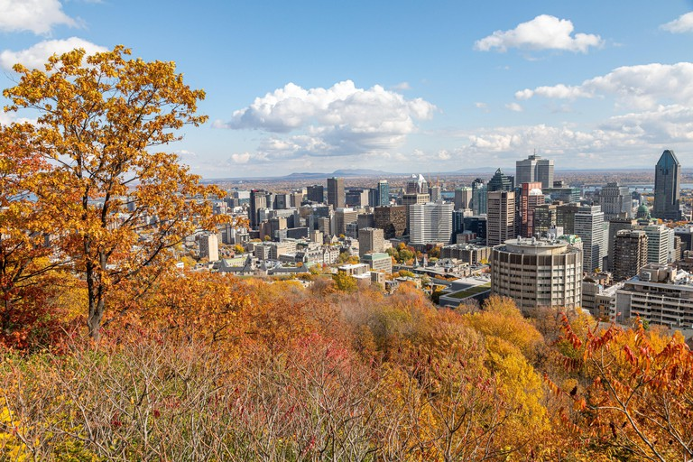 AUTUMN COLORS IN MONT-ROYAL PARK AND VIEW OF THE BUSINESS DISTRICT OF THE CITY OF MONTREAL, QUEBEC, CANADA