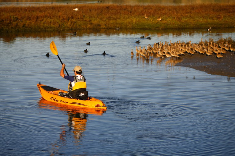 Kayaking In The Newport Back Bay Newport Beach Orange County California United States USA MR model release. Image shot 2008. Exact date unknown.