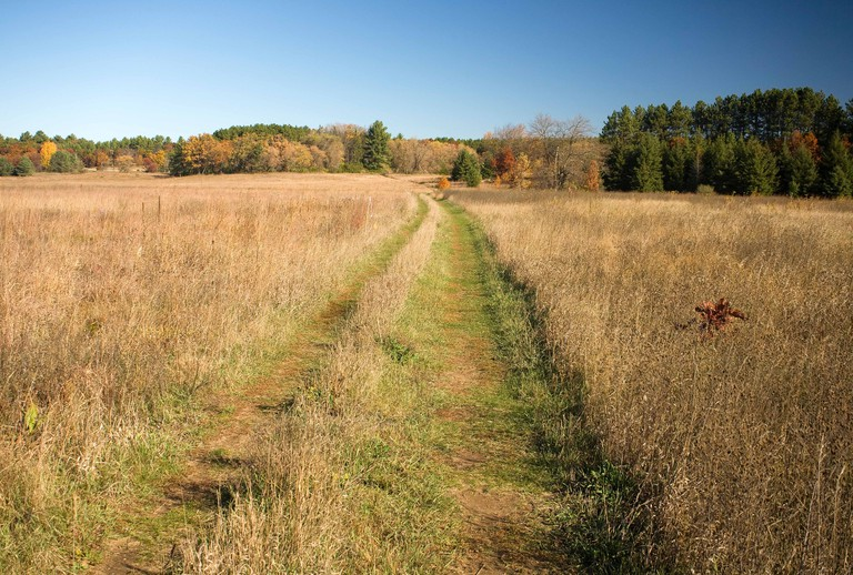 WISCONSIN - The Ice Age National Scenic Trail crossing an open field the Emmons Creek Fishery and Wilderness Area.. Image shot 10/2008. Exact date unknown.