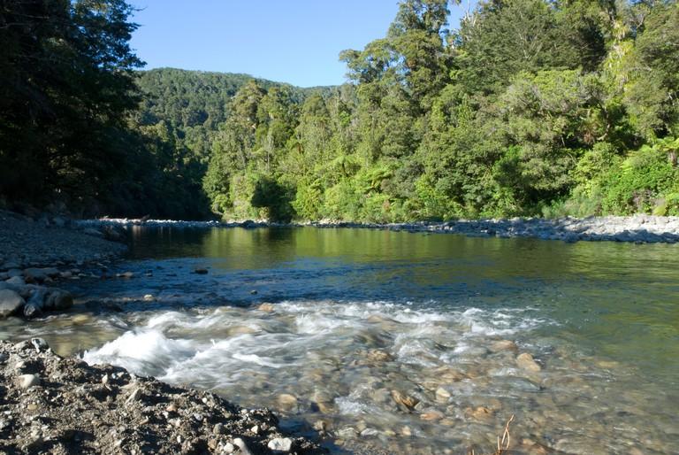 Hutt River, Kaitoki Regional Park, Upper Hutt, Wellington, North Island, New Zealand