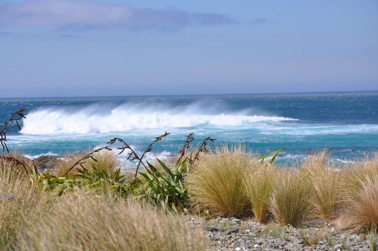 New Zealand, Lyall bay in Wellington