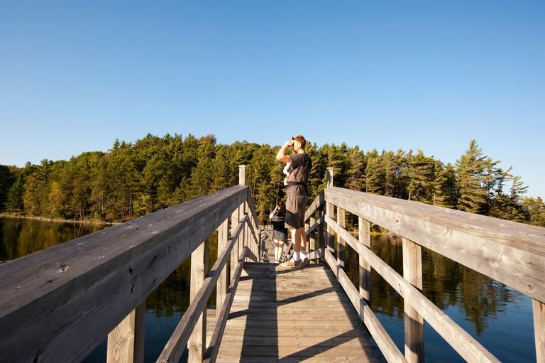 Bridge over Charleston Lake in Charleston Provincial Park, rural Ontario, Canada