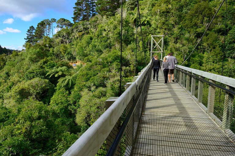 New Zealand North island Wellington Zealandia (formerly known as the Karori Wildlife Sanctuary) tucked in the hills is a