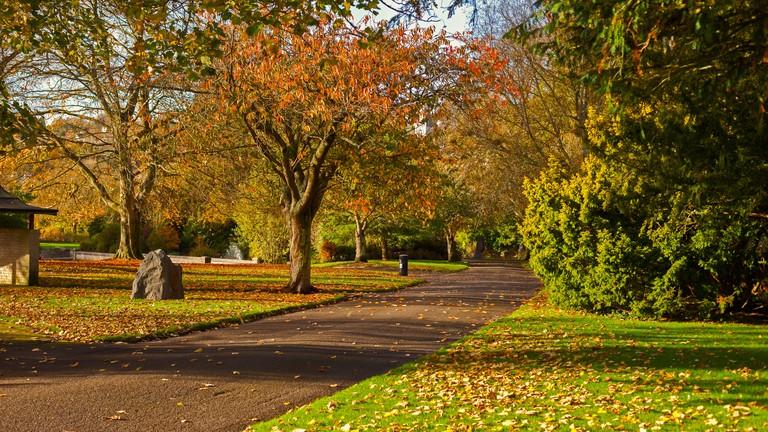 Autumn scene in Fitzgerald park, Cork City, Ireland
