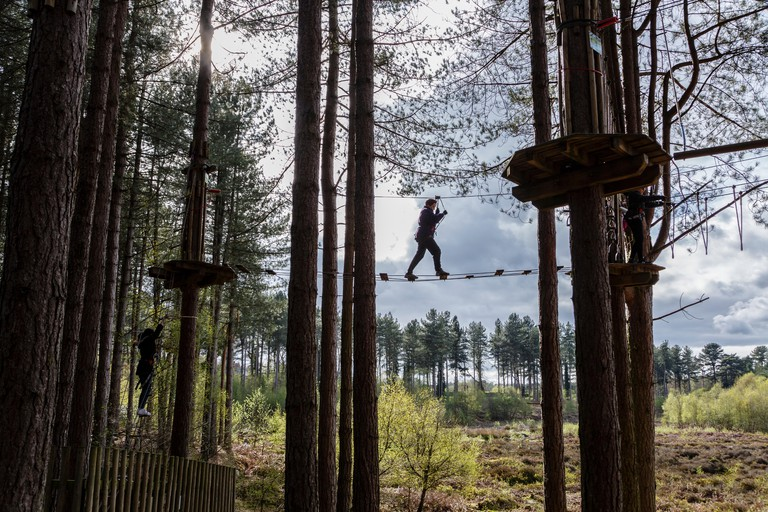 Go Ape high ropes course, Delamere Forest, Cheshire