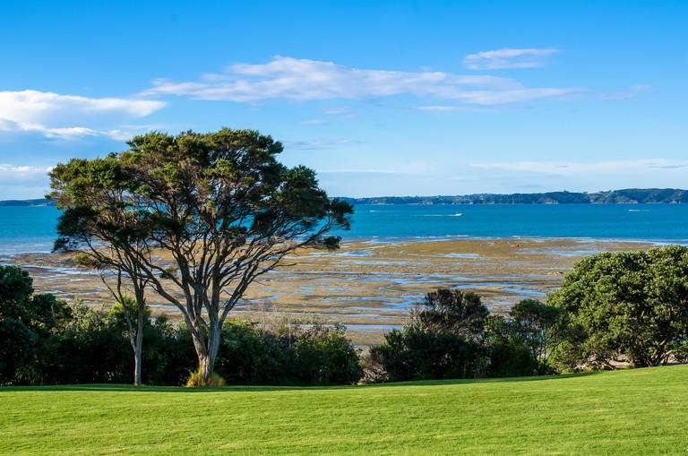 Omana Regional Park in Auckland, New Zealand.