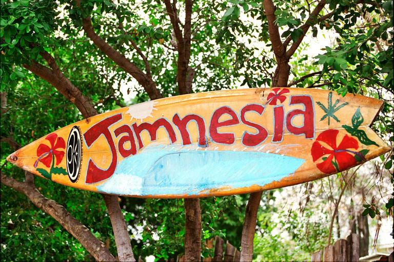 Jamnesia Surfing, Jamaica