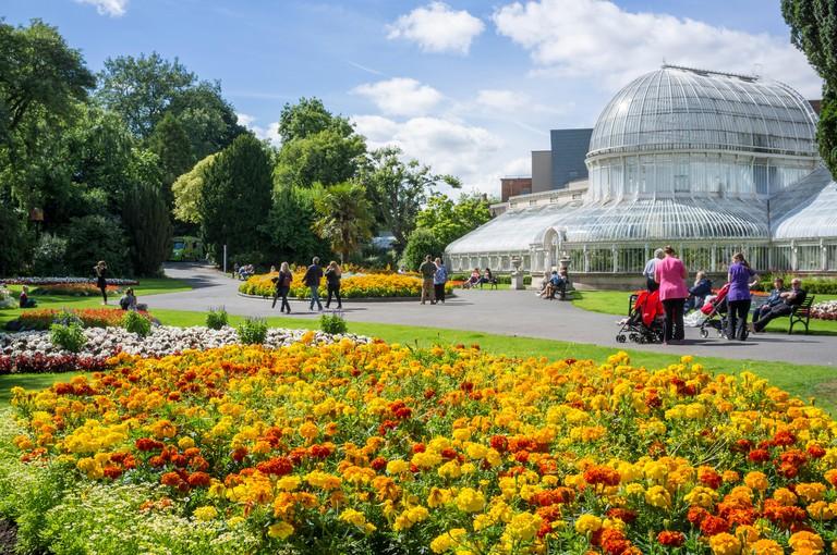 Belfast, Northern Ireland, UK. 9 August, 2107. UK weather: People in Botanic Gardens, Belfast enjoying the sunshine and a temperature of 20C. Credit J Orr/Alamy Live News