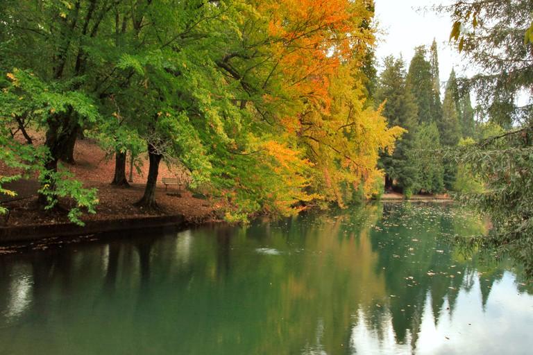 Usa, Oregon, Portland. Pond at Laurelhurst Park. Credit as: Steve Terrill / Jaynes Gallery / DanitaDelimont.com