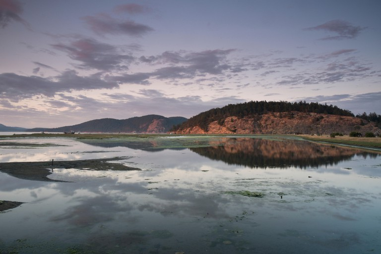 Frost Island Reflection in Wetlands During Sunset at Spencer Spit State Park, Lopez Island, Washington