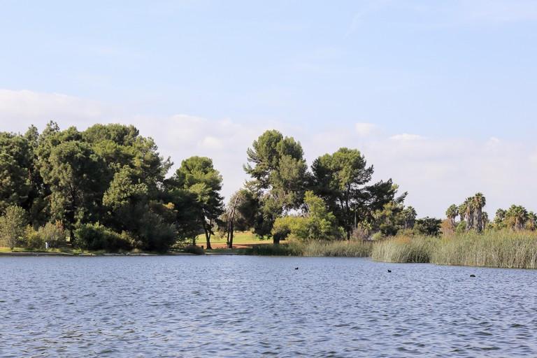 Peaceful afternoon at El Dorado East Regional Park, Long Beach California