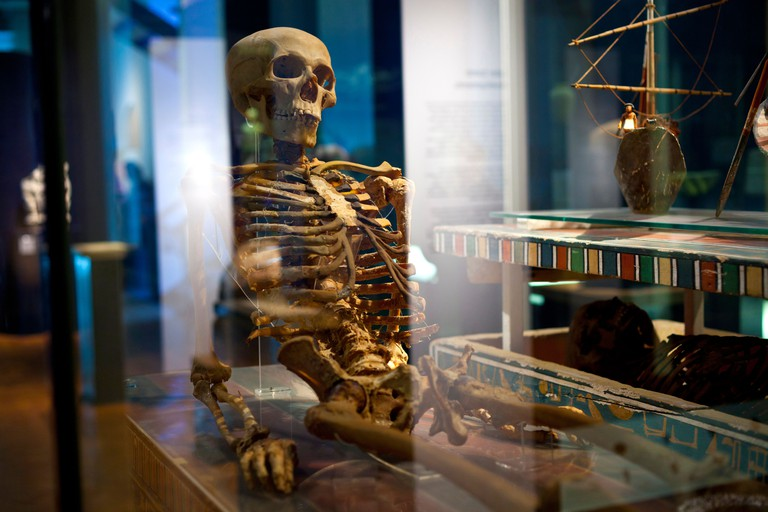The skeleton of an Egyptian mummy on display at the Manchester Museum at the University of Manchester in the UK. Image shot 10/2011. Exact date unknown.