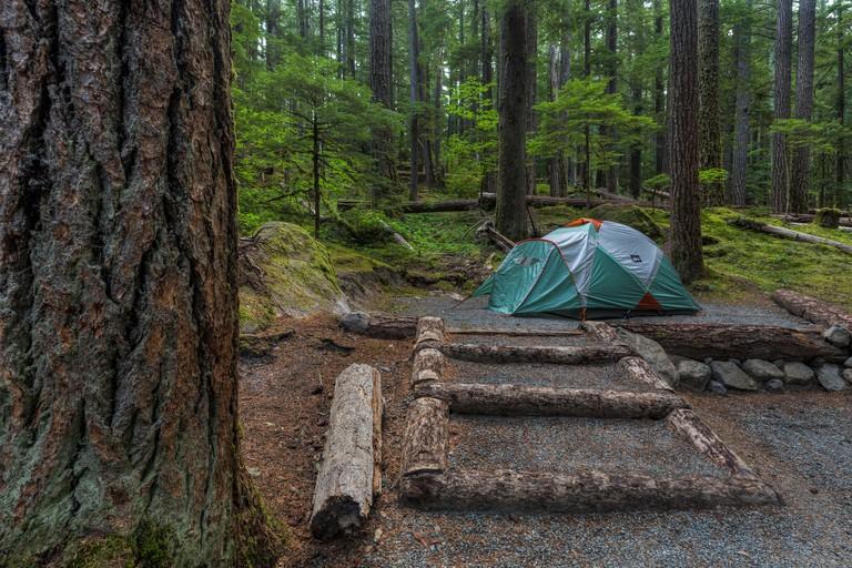 Ohanapecosh Campground, Washington State-min