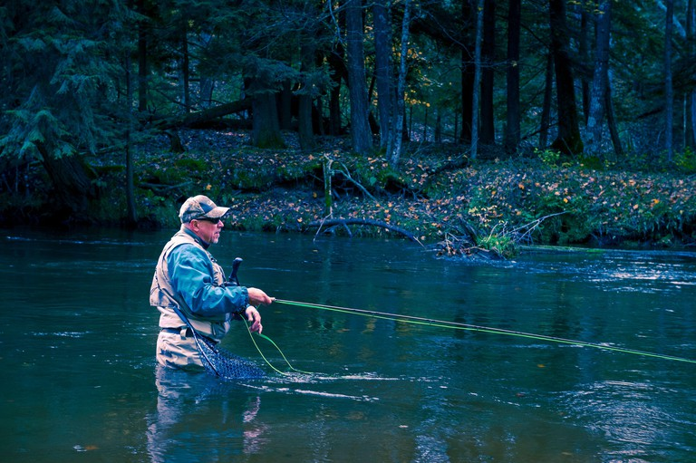 Fly fisherman casting for steelhead trout in the Pere Marquette River near Walhalla, Michigan, USA