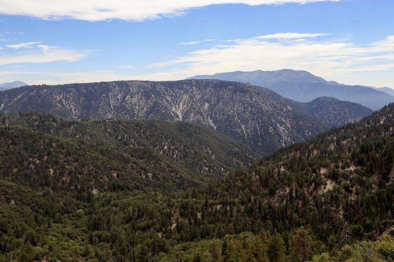 A vewi of San Bernarnino National Forest, Big Bear California