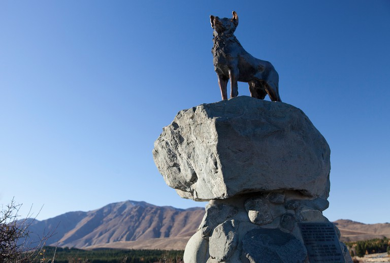 Sheepdog statue, Lake Tekapo New Zealand 2