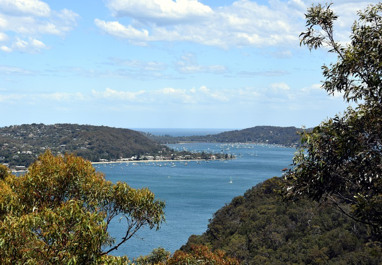 View of Pittwater Bay from West Head (Ku-ring-gai Chase National Park, NSW, Australia)