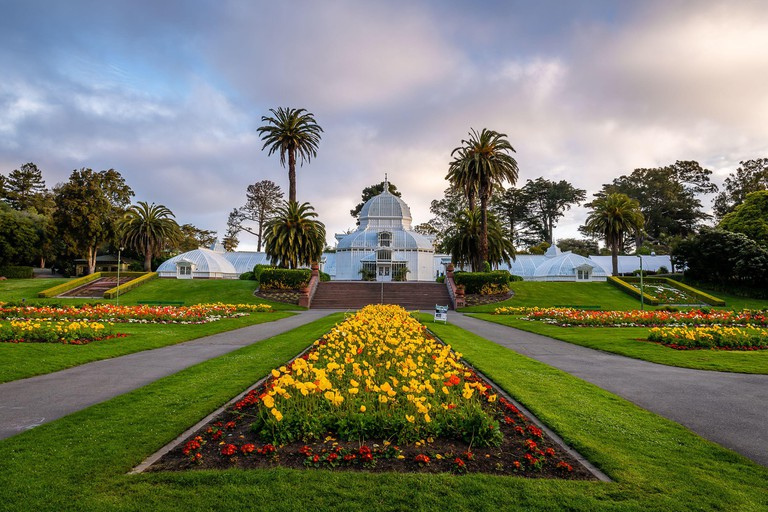 Early Morning from Golden Gate Park