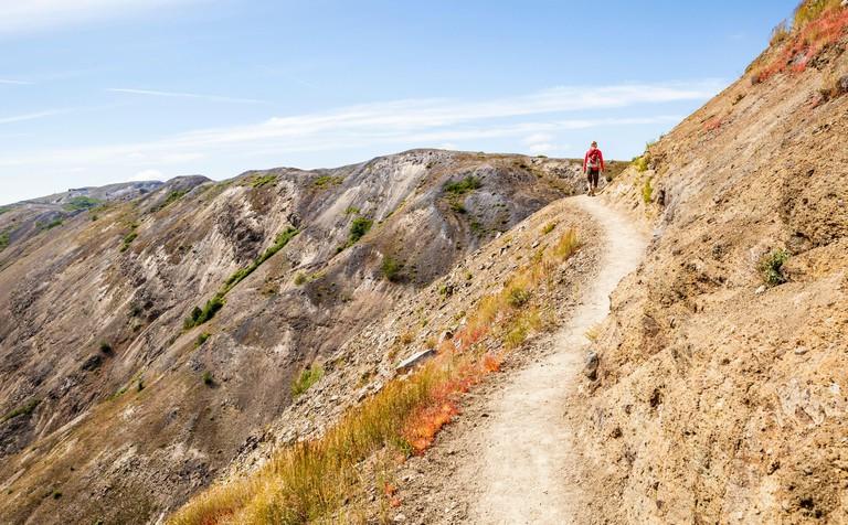 A woman walking along a trail cut into a steep hillside, Johnston Ridge Trail, Mount St Helens National Monument, Washington, USA.