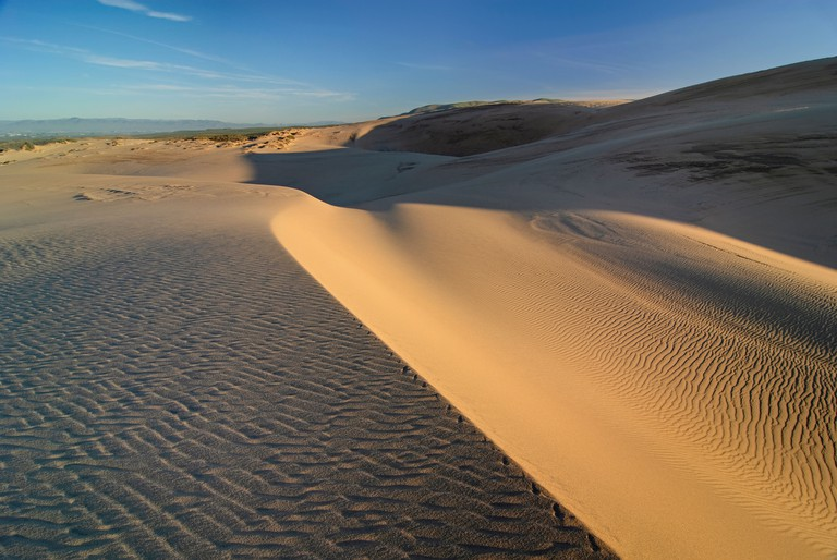Beautiful sand dunes of the Rancho Guadalupe Dunes Preserve in Central California.