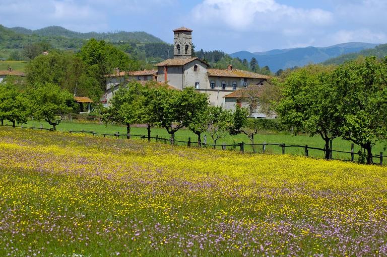 Mugello, Tuscany, Italy