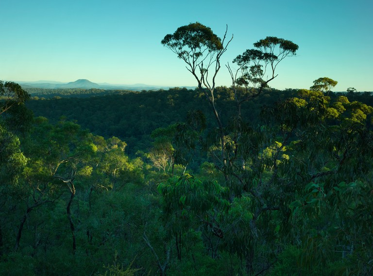 Sun rising over forested hills and Mt Yengo.  Yengo National Park, NSW Australia