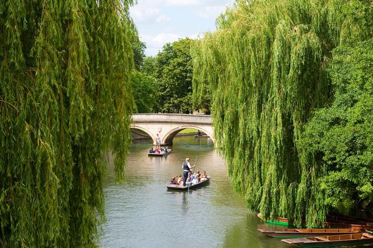Tourists punting on The Backs, Cambridge