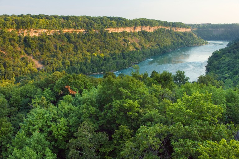 The Niagara River from the viewpoint over the Niagara Glen Nature Reserve, Niagara Falls, Ontario, Canada