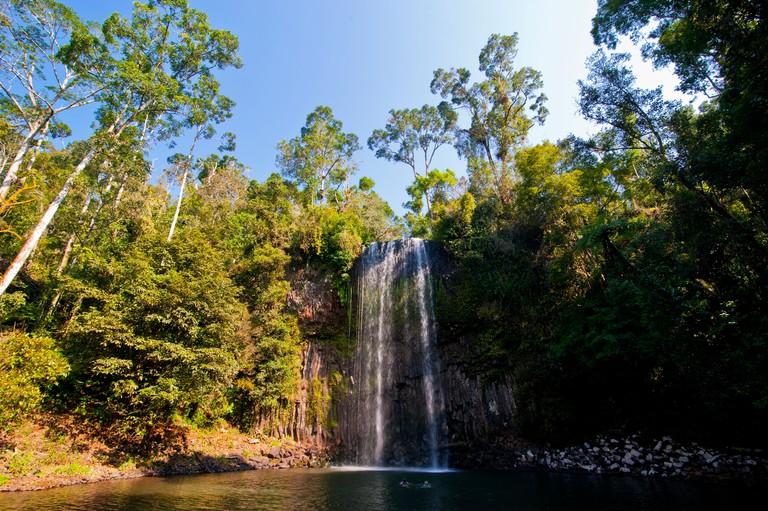 Millaa Millaa Falls, Atherton Tablelands, Queensland, Australia, Pacific