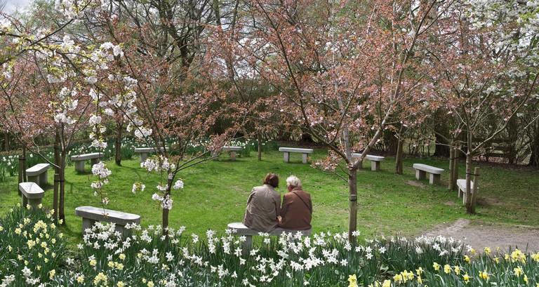 The friendship garden at the Botanic gardens in Durham The Durham University Botanic Garden is a botanical garden located in Durham, England.