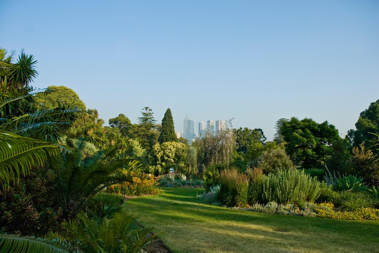 The Royal Botanic Gardens Melbourne,internationally renowned botanical gardens located near the centre of Melbourne,Victoria,Aus