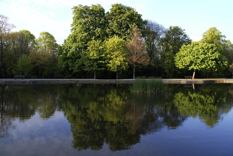 Reflection of trees on a small lake in Radnor Park, Folkestone, Kent