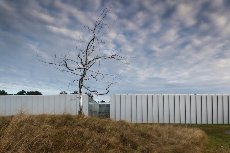 North Carolina, Raleigh, North Carolina Museum of Art, exterior with stainless steel tree sculpture, Askew, by artist Roxy Paine