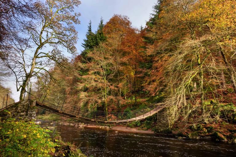Allen Banks, Northumberland