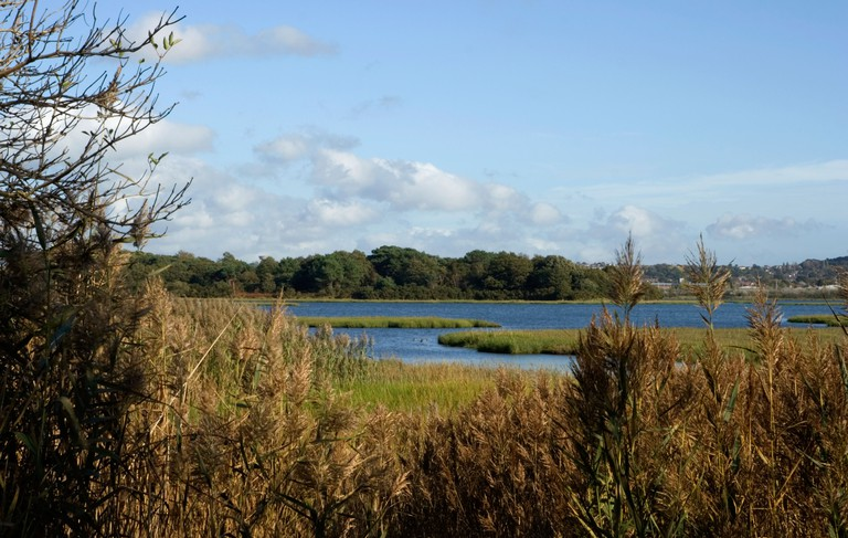 """""""Holes Bay"""" at Upton Country Park Nature Reserve, Dorset, , UK. Image shot 2006. Exact date unknown."""